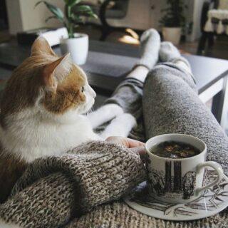 The coziest company ☕️ #harmonyhomewear #homewear #cozy #stayhome #staywarm